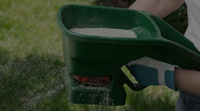 Lakeville Fertilization and Weed Control