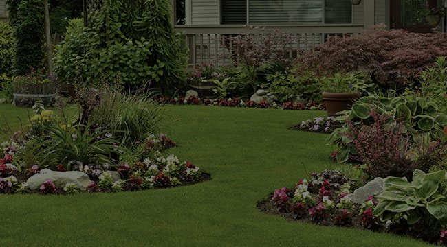 Farmington Landscape Design