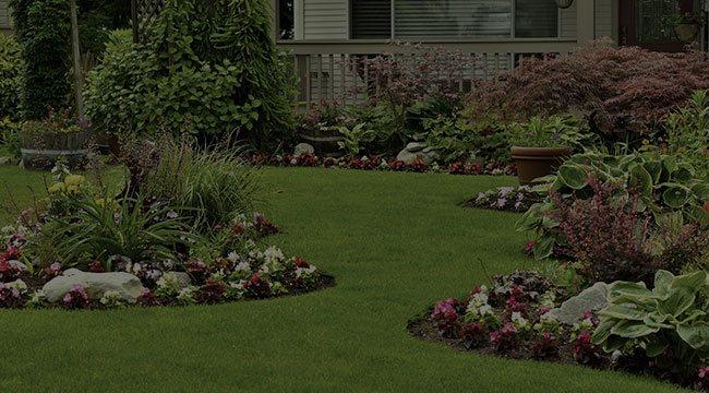 Lakeville Landscape Design