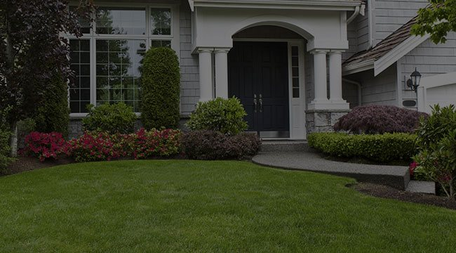Farmington Landscaping